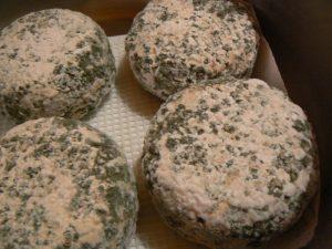 Blue cheese from Terra do Milho
