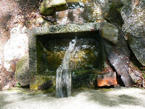 Water of the Serra de Monchique