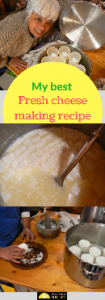 Fresh cheese recipe