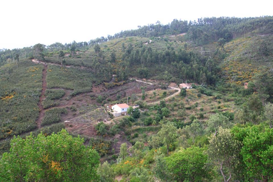 Terra do Milho Farm