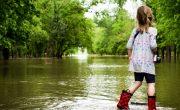 flood on your homestead