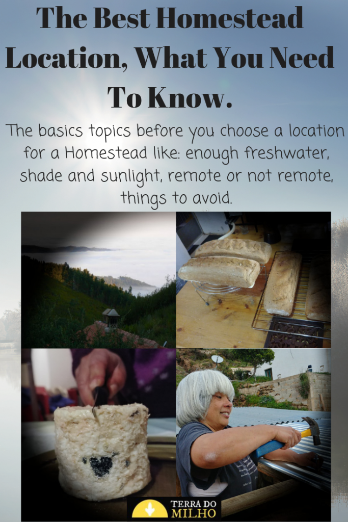 Pinterest Pin  for the best Homestead Location