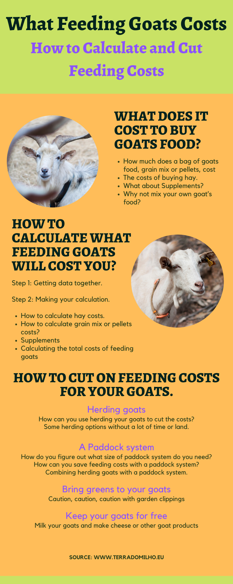 Infograf What feeding goats costs