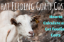 What Feeding Goats Costs